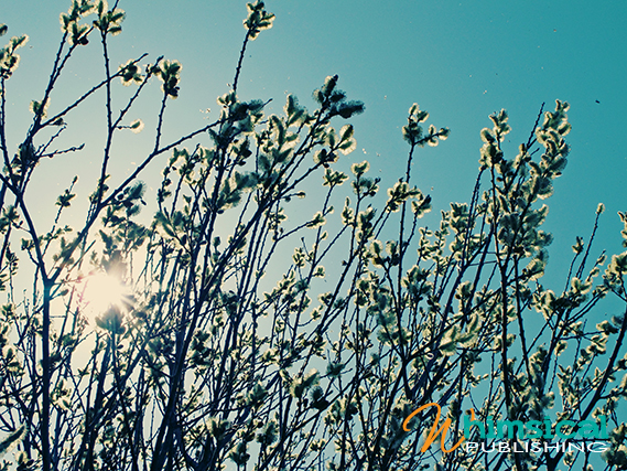 Spring_2011_17_small