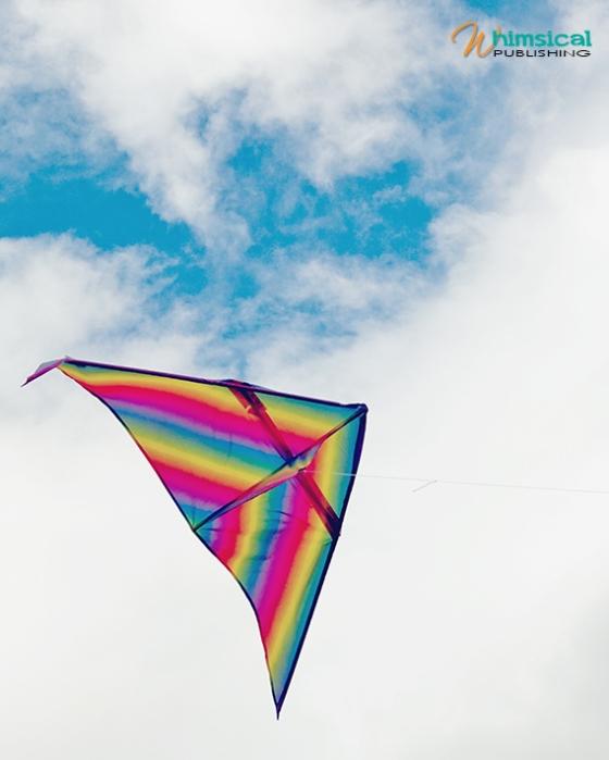 Kites_2011_05