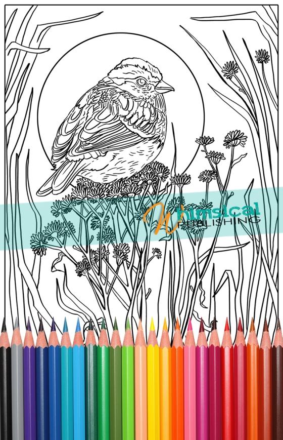 Sparrow_Small